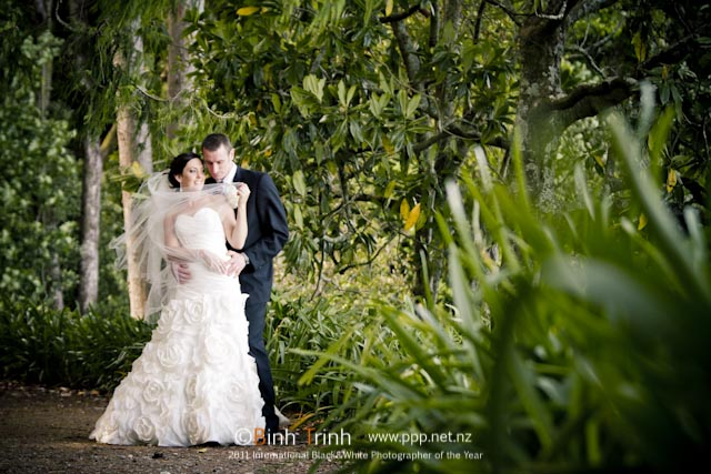 Beautiful wedding photo in wanganui