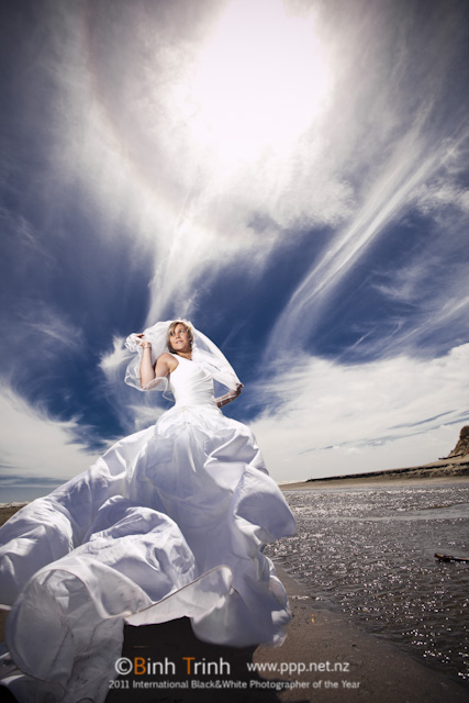 trash the dress photo in palmerston north