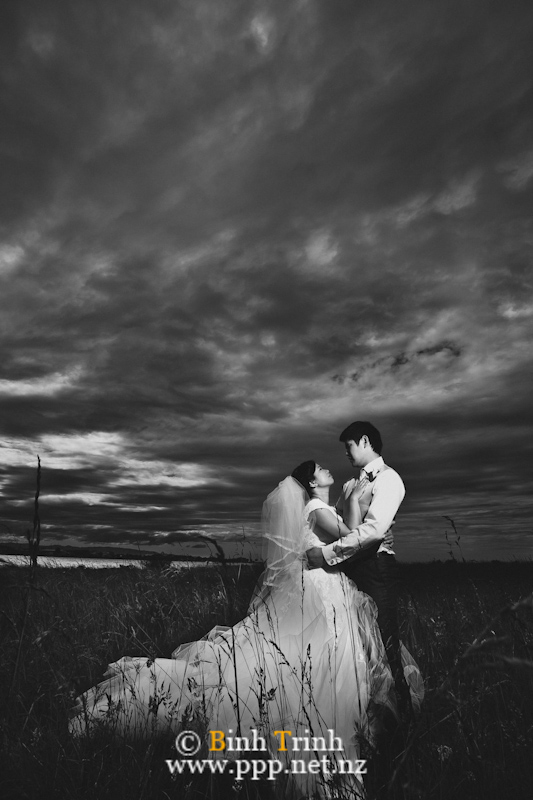 nelson wedding photography dyan0779