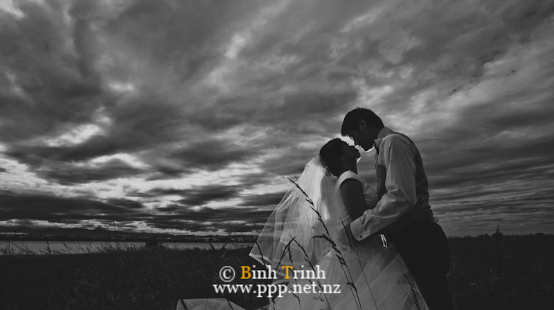nelson wedding photography dyan0792