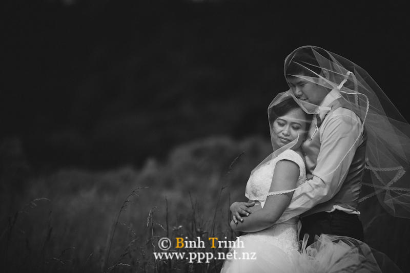 nelson wedding photography dyan0835