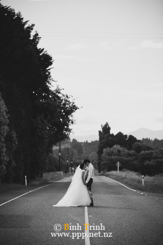 nelson wedding photography dyan1010