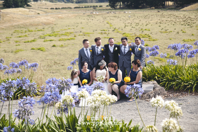 wedding photography wellington andrea 069