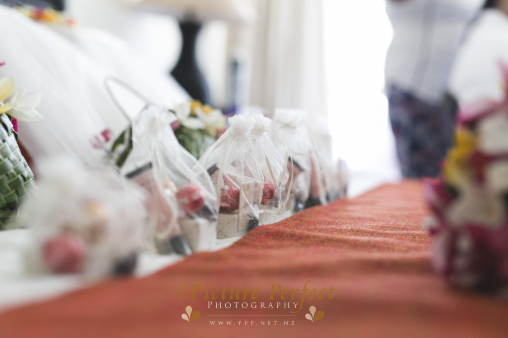 Destination Fiji wedding photography Tinka 0228