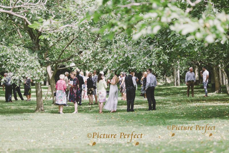 palmerston north wedding photo kellie 117