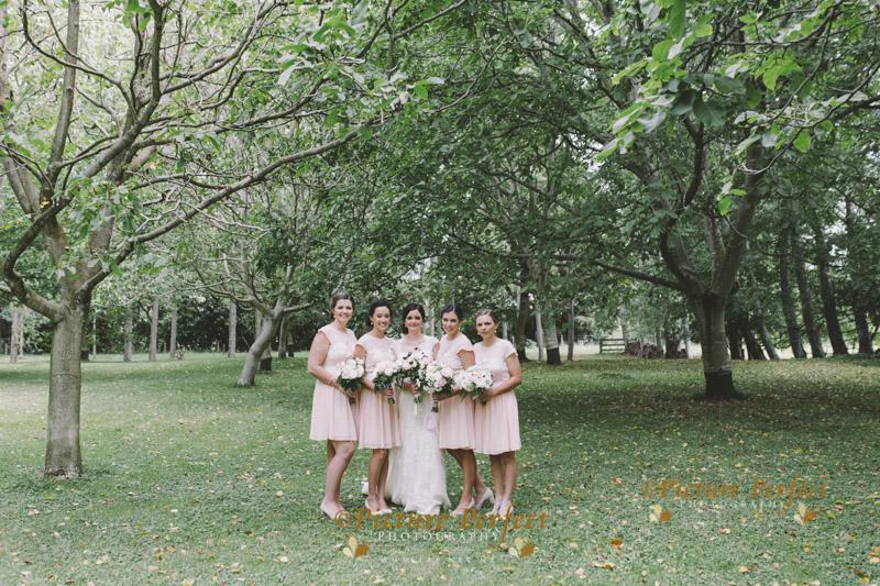 palmerston north wedding photo kellie 148