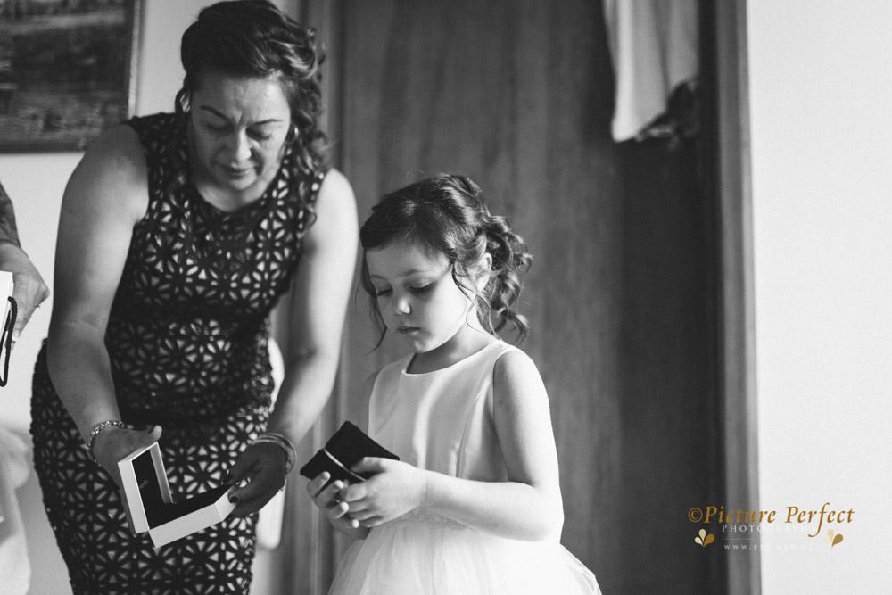 Nicki palmerston north wedding 0090