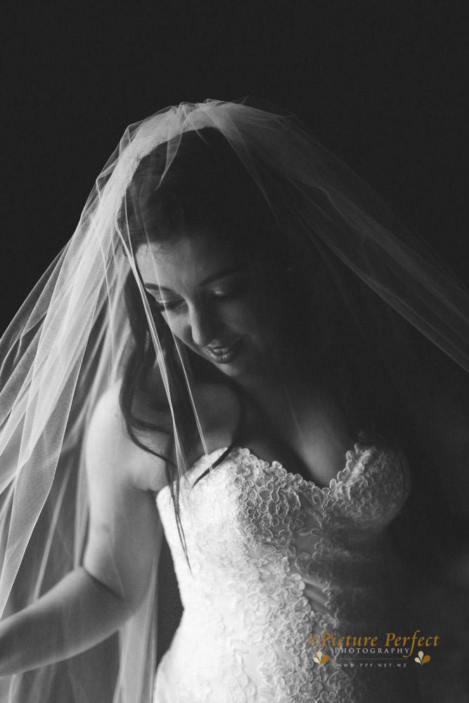 Nicki palmerston north wedding 0159