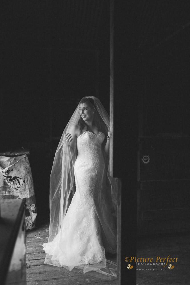 Nicki palmerston north wedding 0160