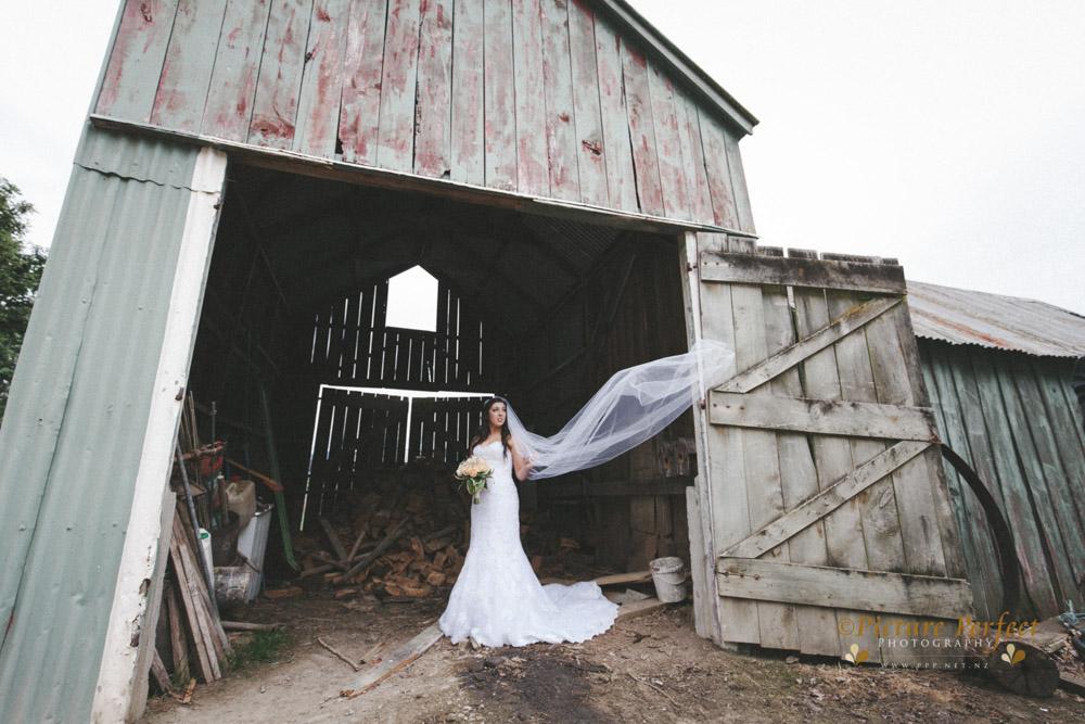 Nicki palmerston north wedding 0179