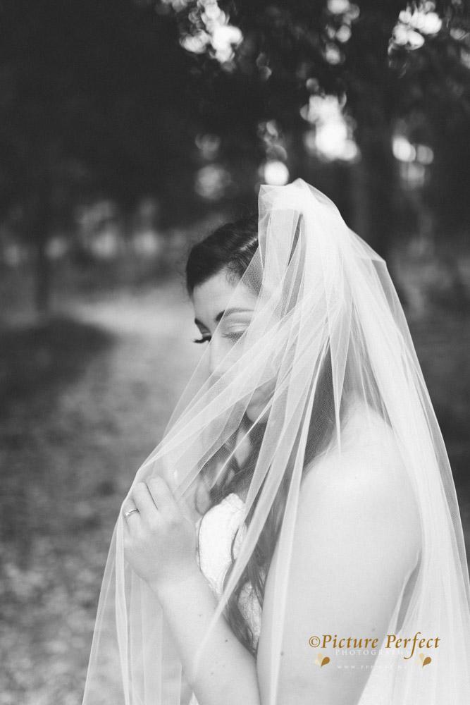 Nicki palmerston north wedding 0210