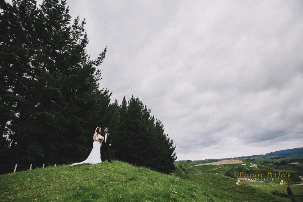 Nicki palmerston north wedding 0215