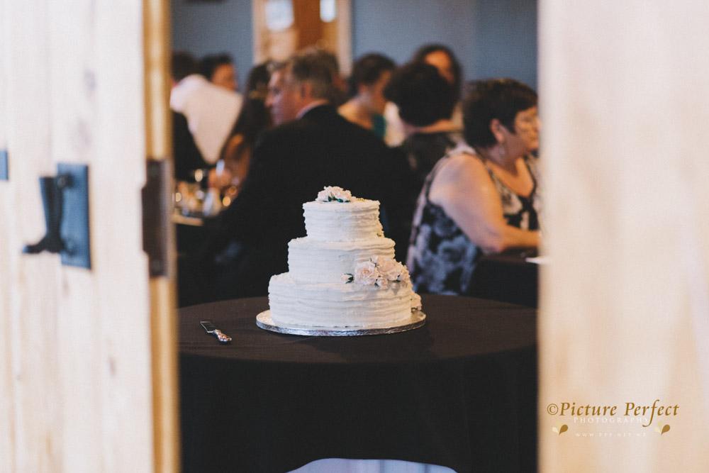 Nicki palmerston north wedding 0222