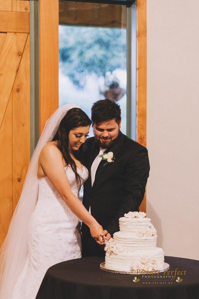 Nicki palmerston north wedding 0226