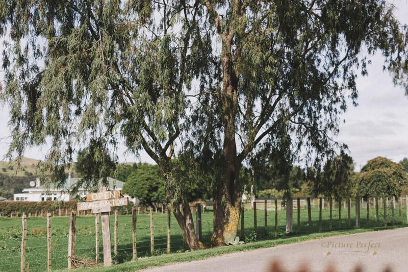 Makoura Lodge wedding photos Caitlin 0002