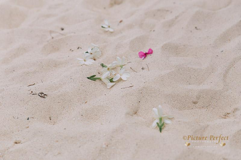 Rarotonga wedding photography Becca 0117