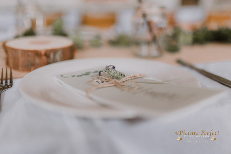 Palmerston North wedding photo Emma 0189