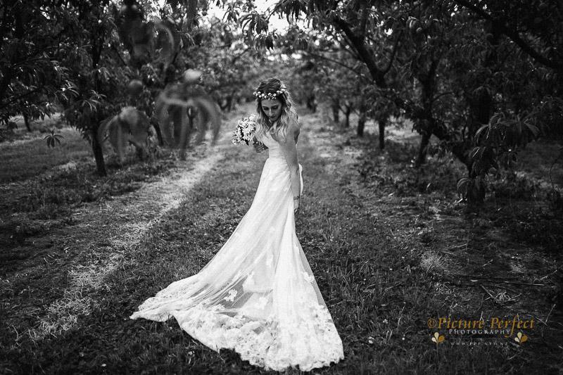 Palmerston North wedding photo Emma 0290