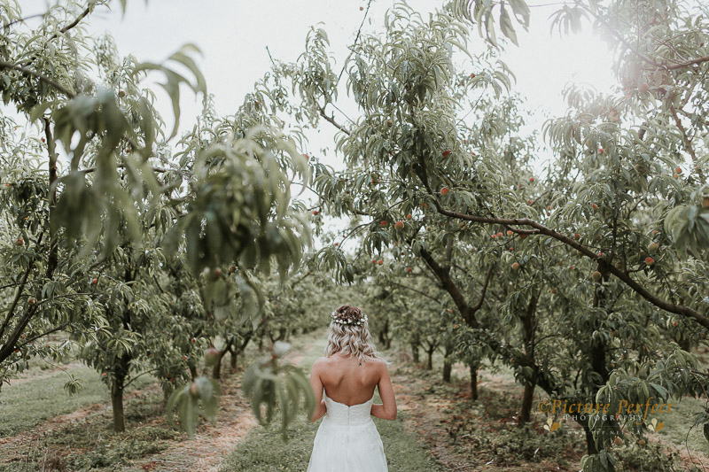 Palmerston North wedding photo Emma 0292