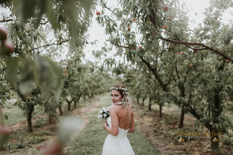 Palmerston North wedding photo Emma 0294