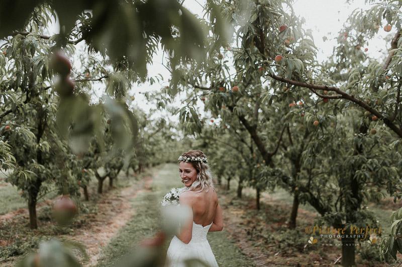 Palmerston North wedding photo Emma 0295