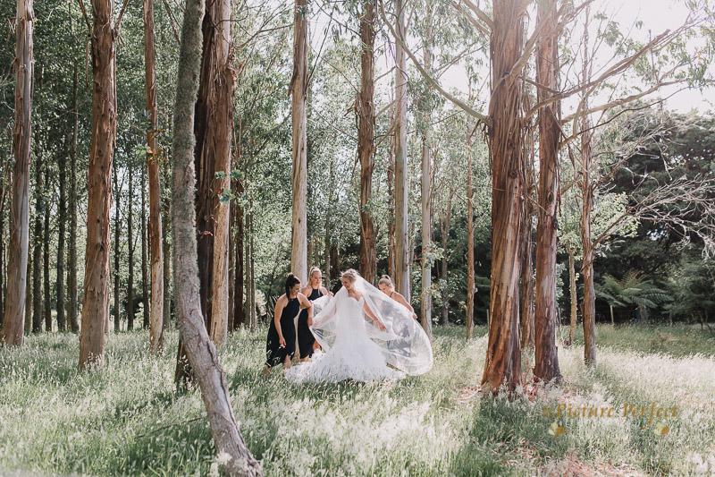 Manawatu wedding photographer Paula 0162