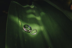 Manawatu wedding rings photos 0018