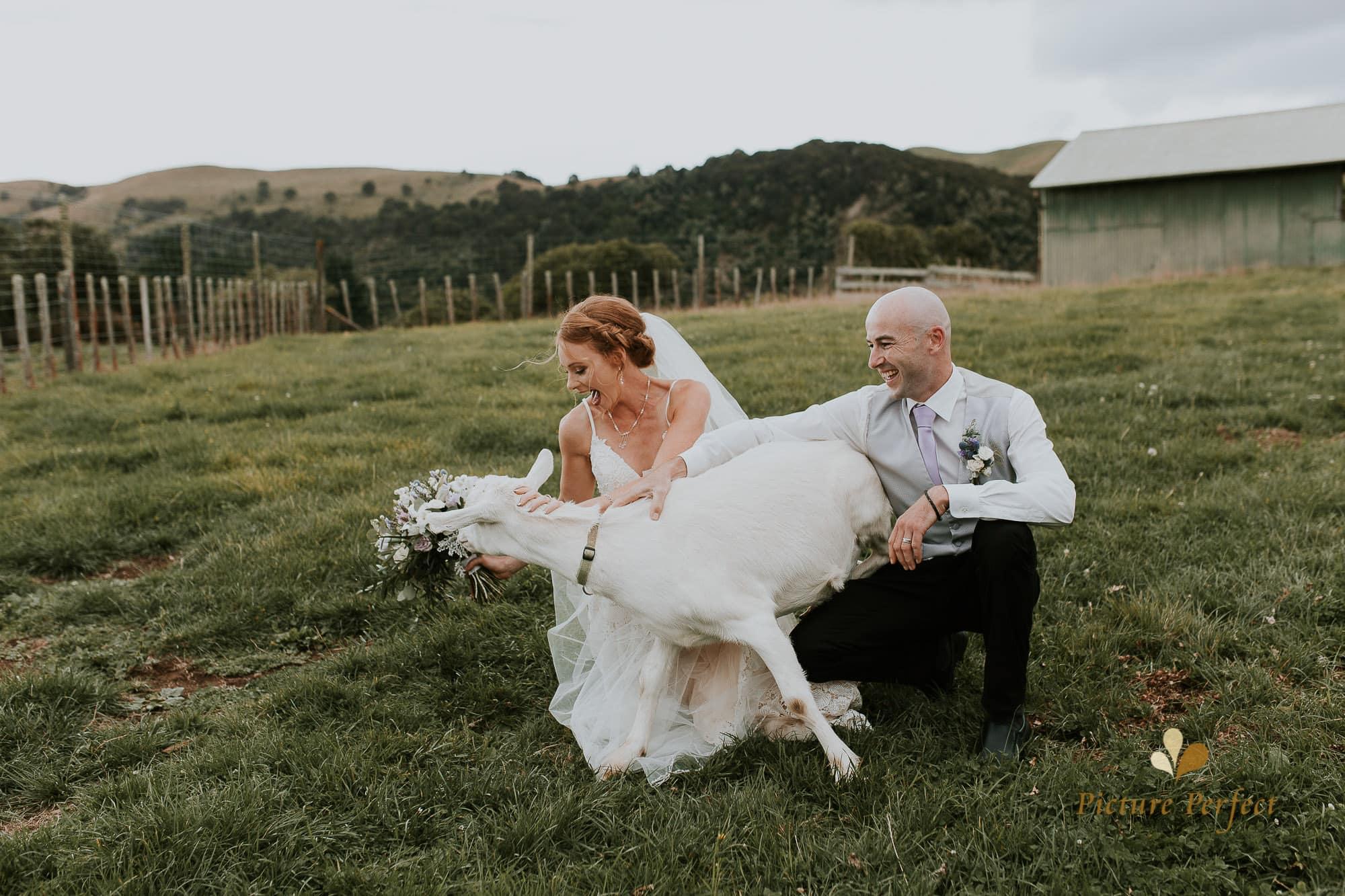 Freya and Matt fun wedding photography 0239