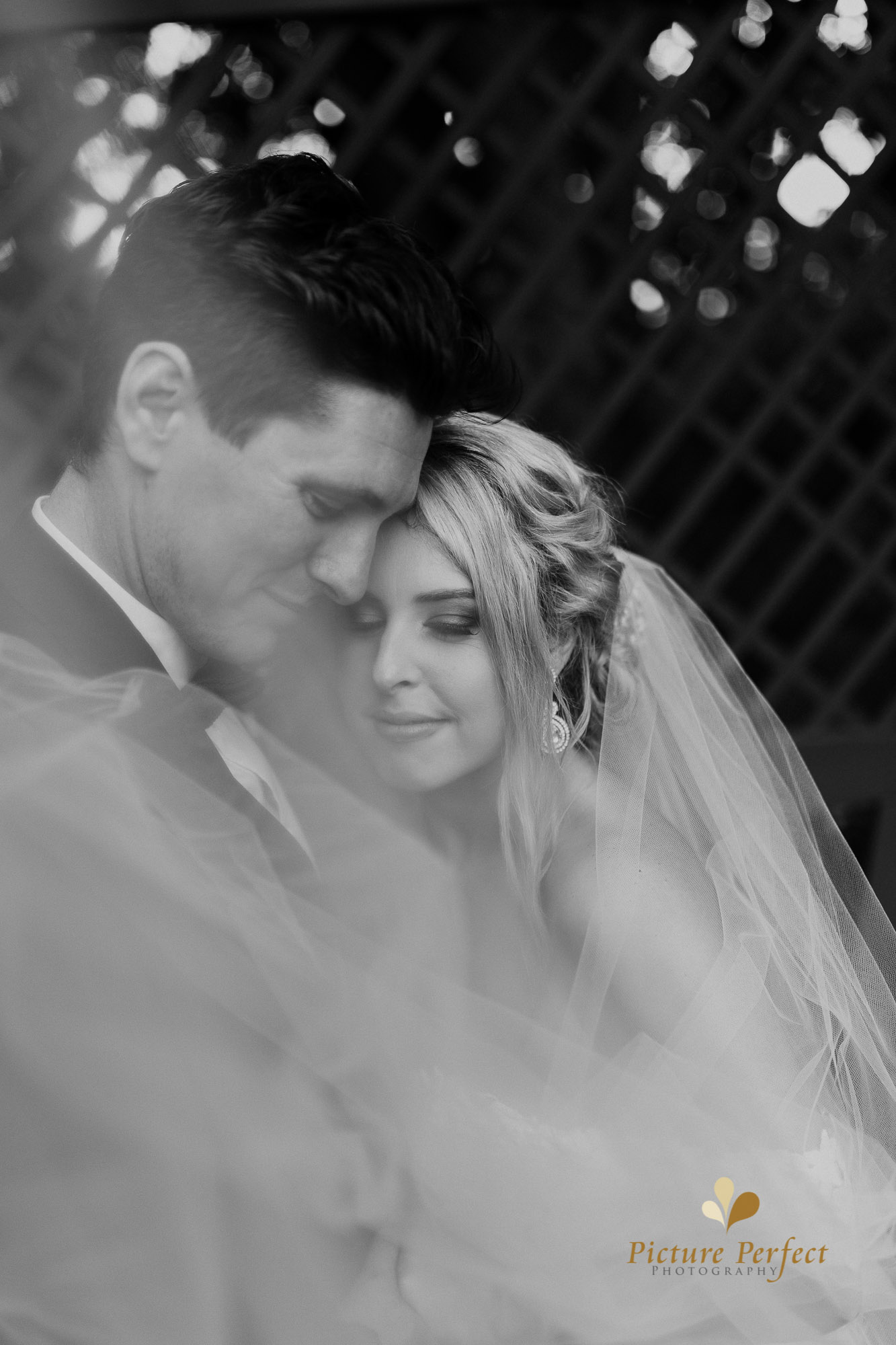 Manawatu wedding photography Danielle 0140