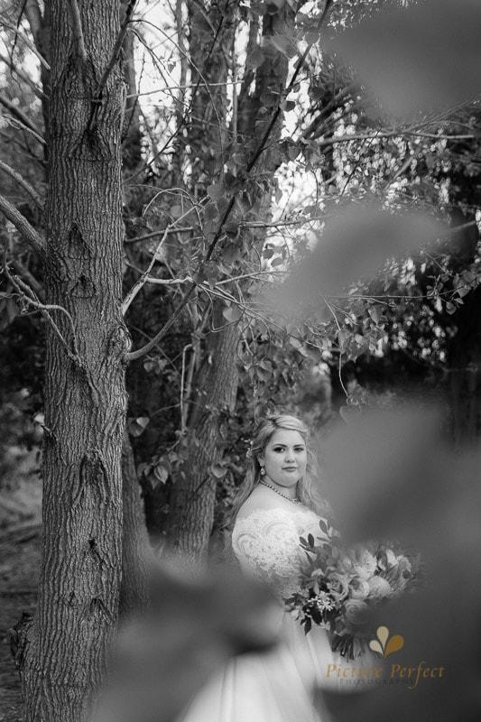 Manawatu wedding image with Emma at Orlando Country 0139