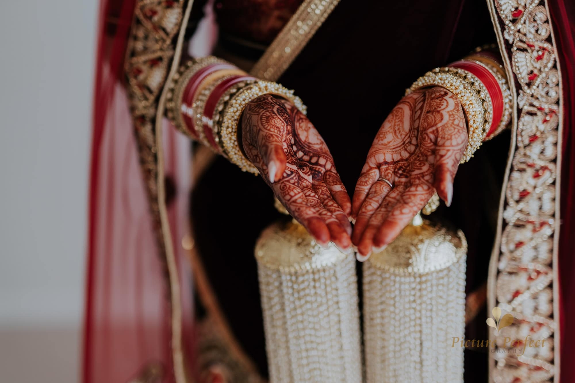 Niroshi Auckland Indian Wedding Day 3 0071
