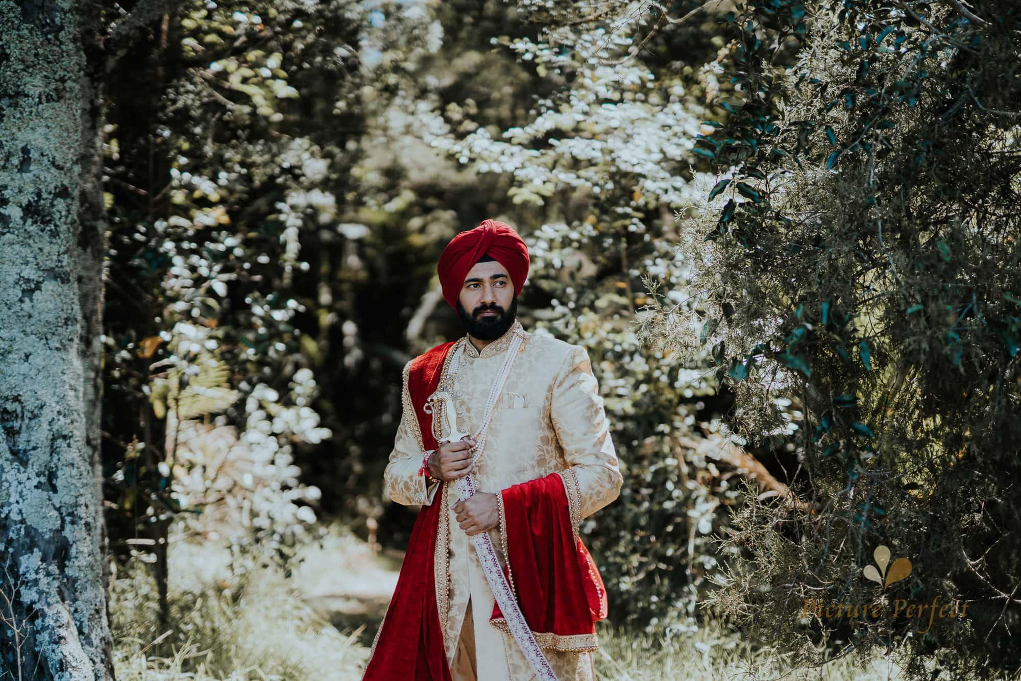 Niroshi Auckland Indian Wedding Day 3 0175