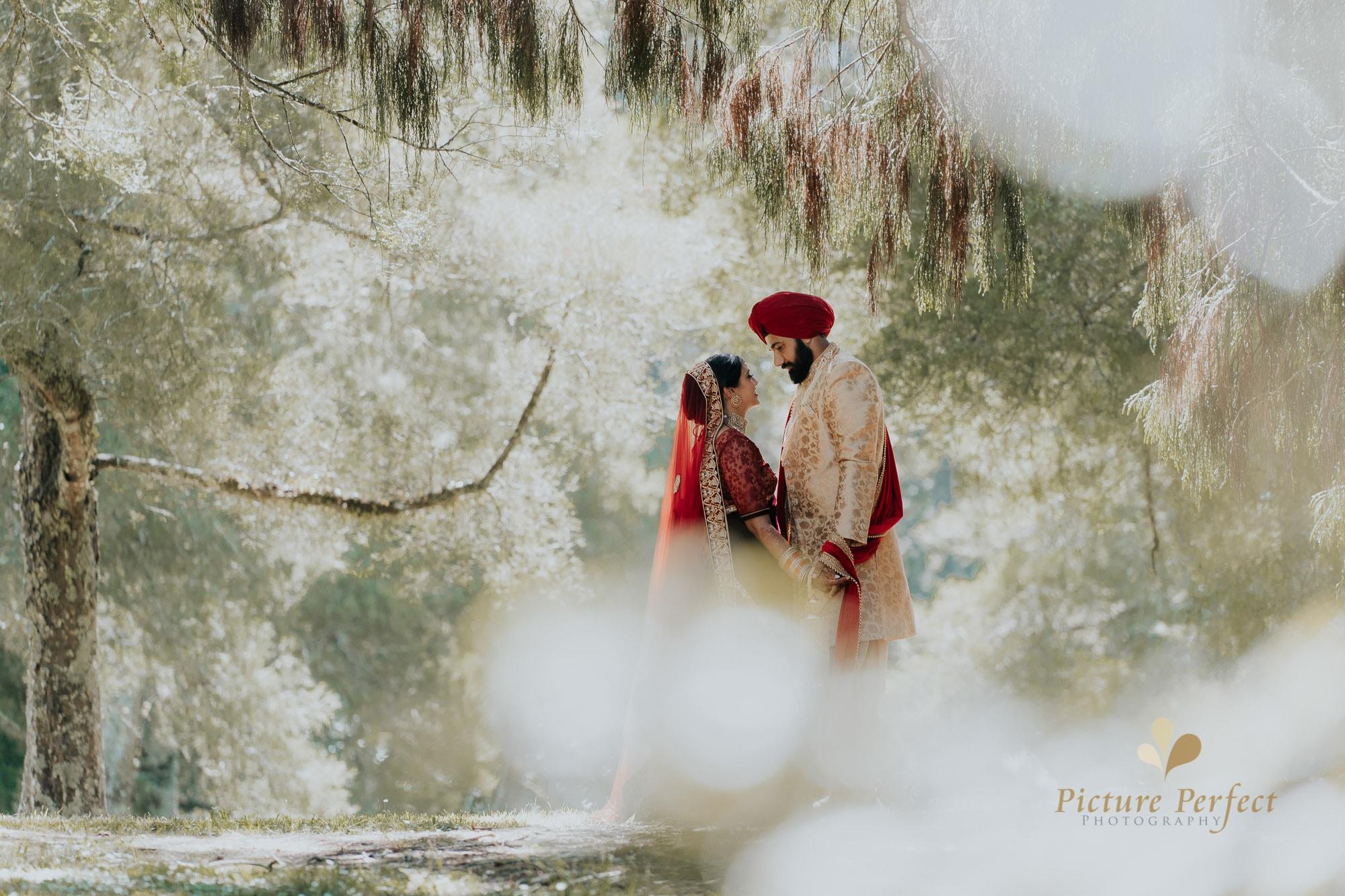Niroshi Auckland Indian Wedding Day 3 0188
