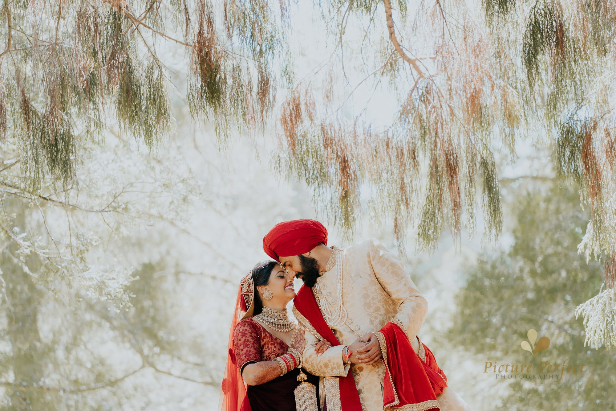Niroshi Auckland Indian Wedding Day 3 0193
