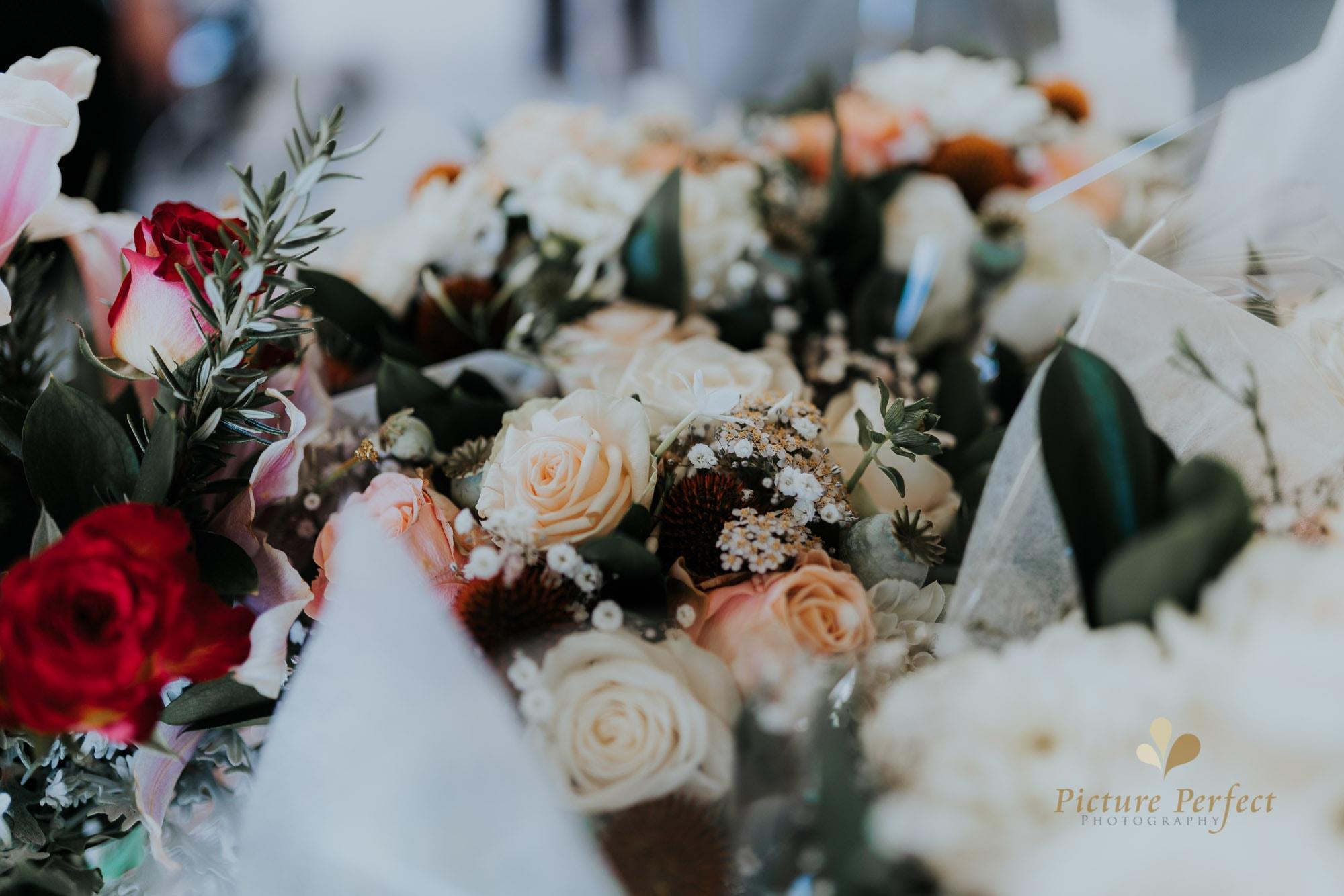 Niroshi Wellington Sri Lankan Wedding Day 3 0040