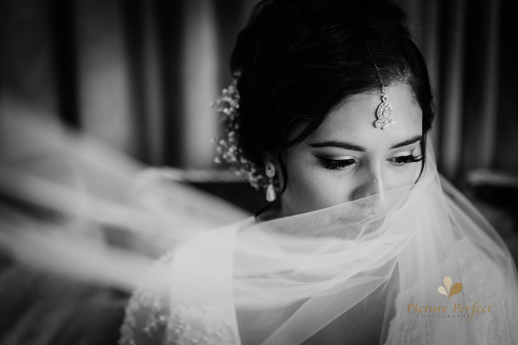 Niroshi Wellington Sri Lankan Wedding Day 3 0065