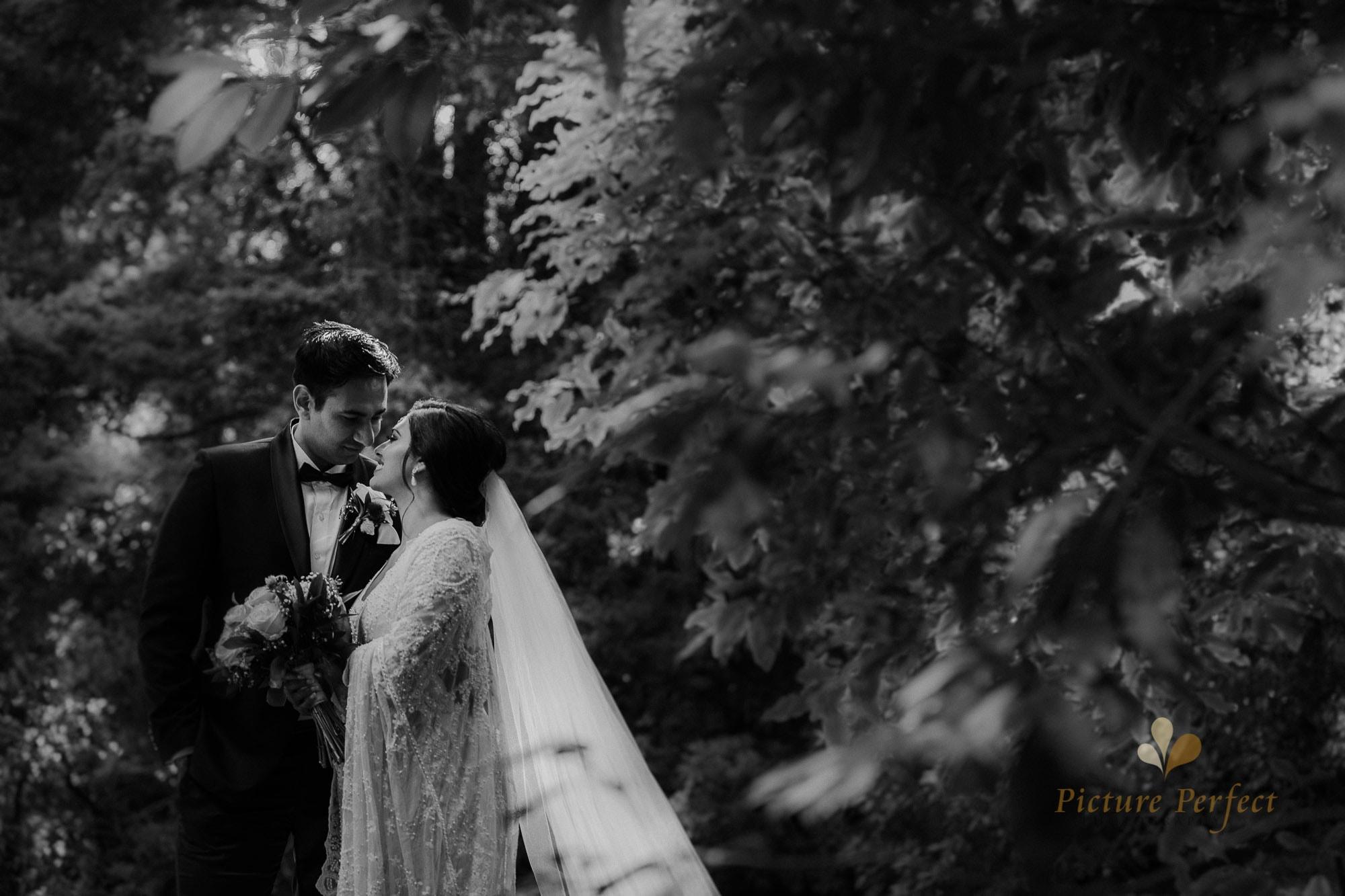 Niroshi Wellington Sri Lankan Wedding Day 3 0134