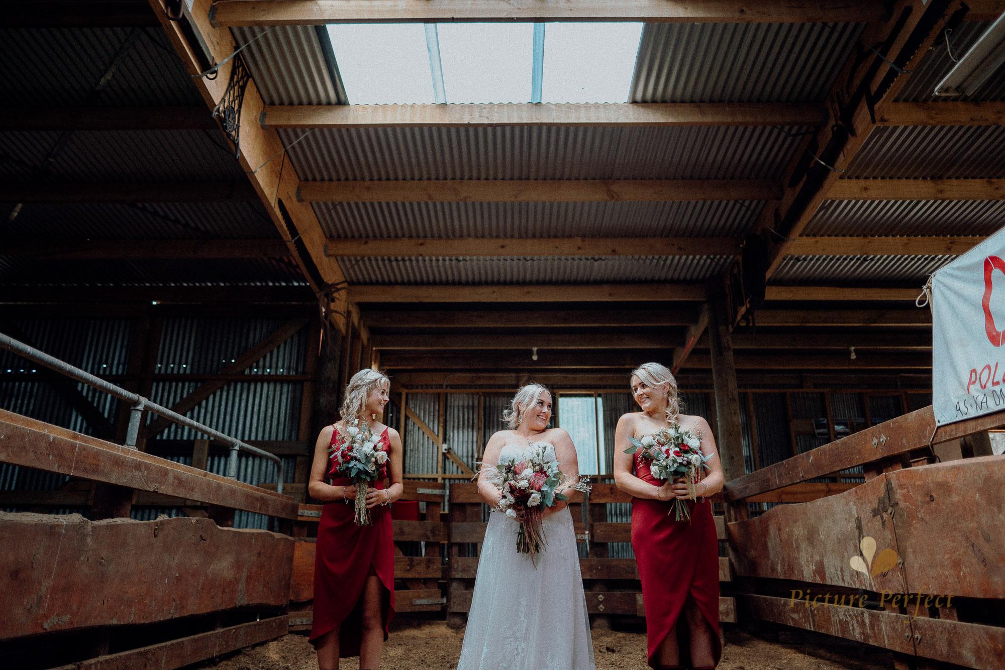 Palmerston North wedding photographer with Monique 0185