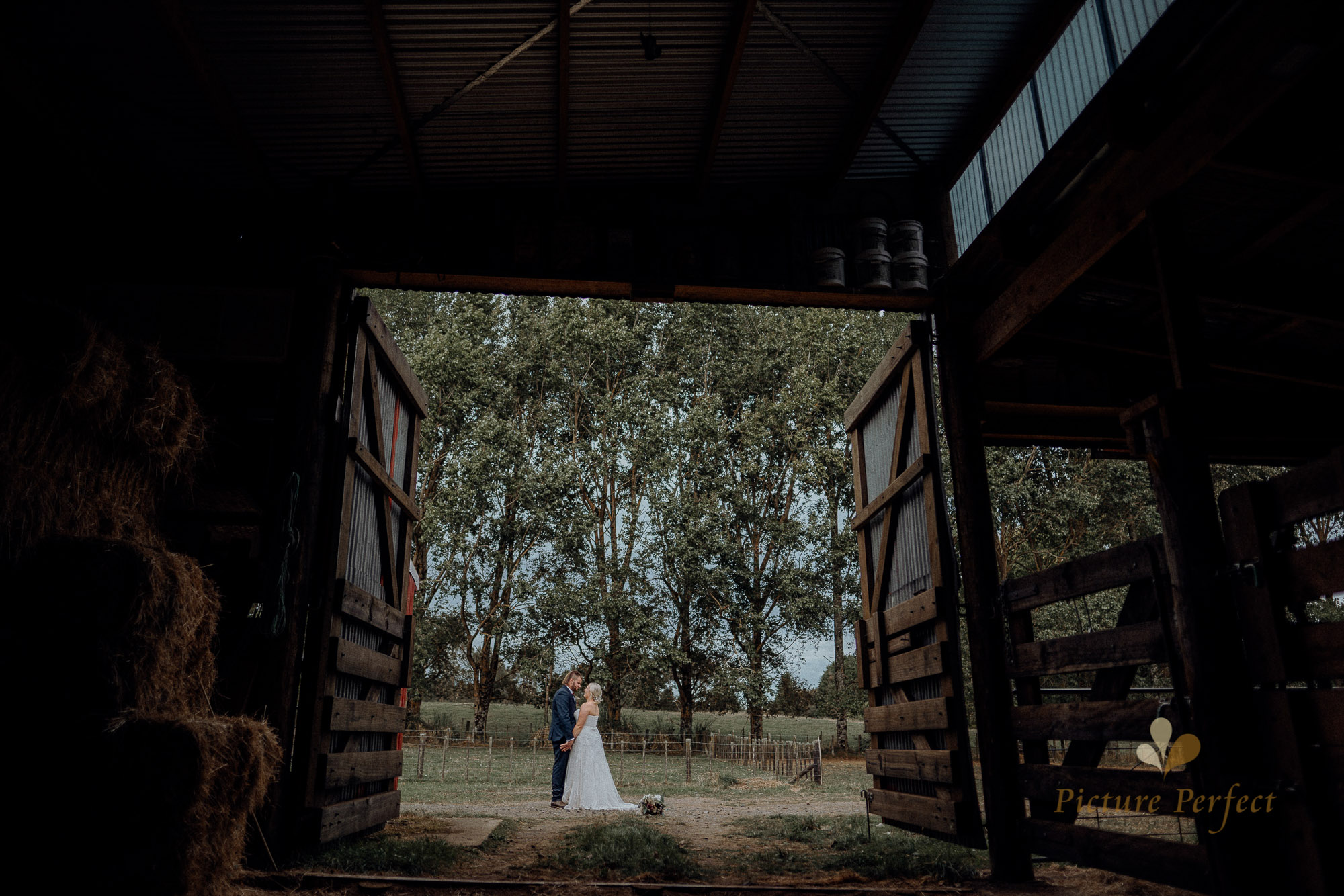 Wellington wedding photographer at a rustic farm wedding Monique