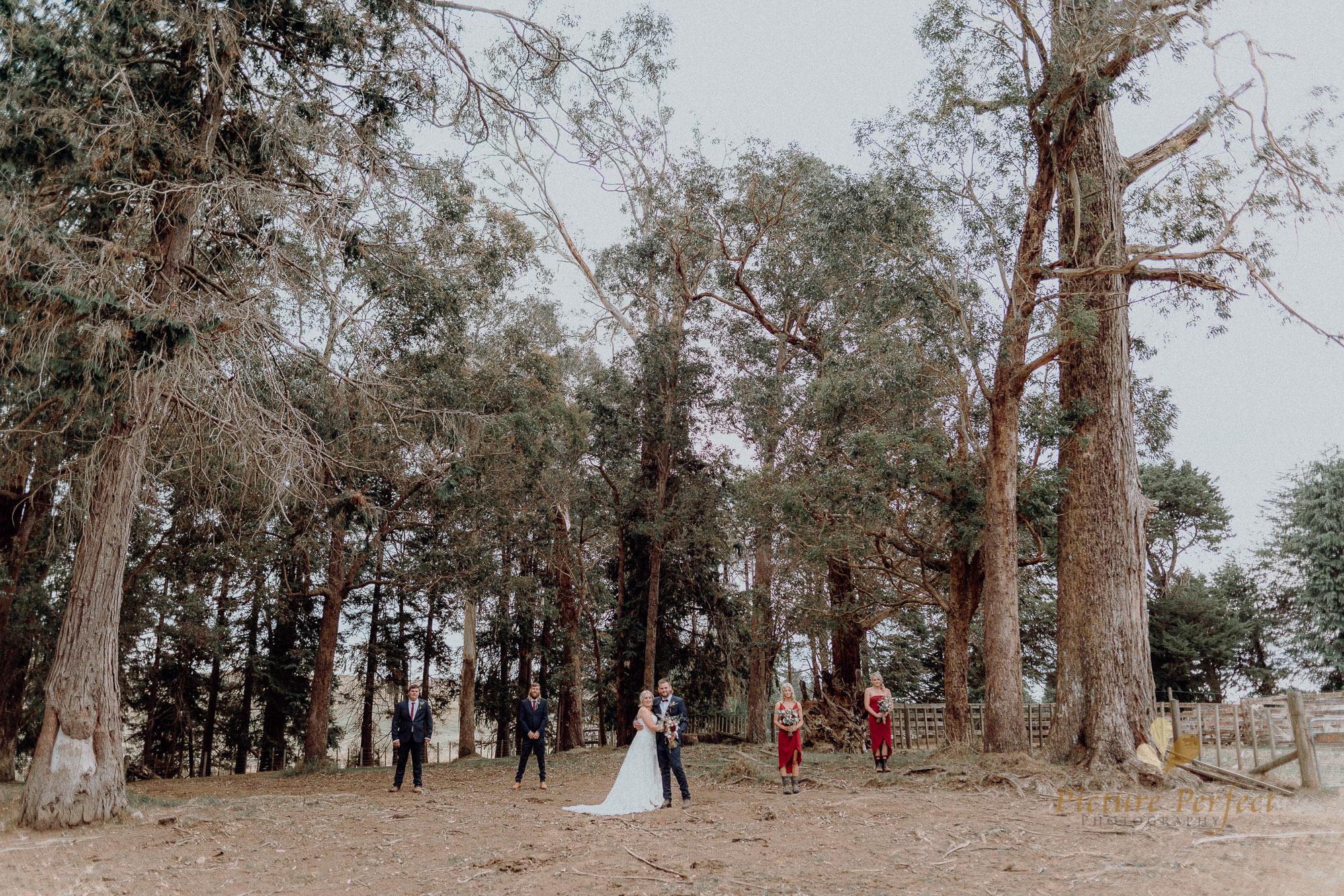 Palmerston North wedding photographer with Monique 0198