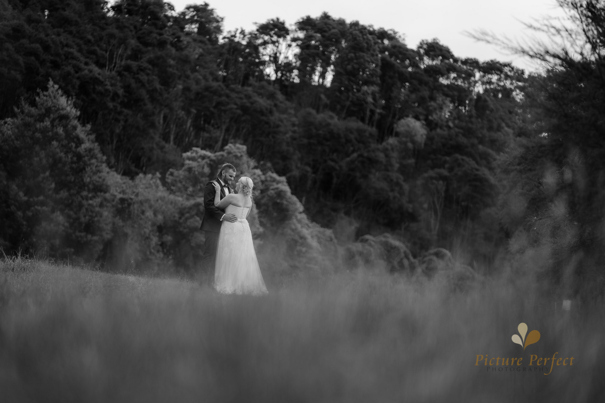 Palmerston North wedding photographer with Monique 0252