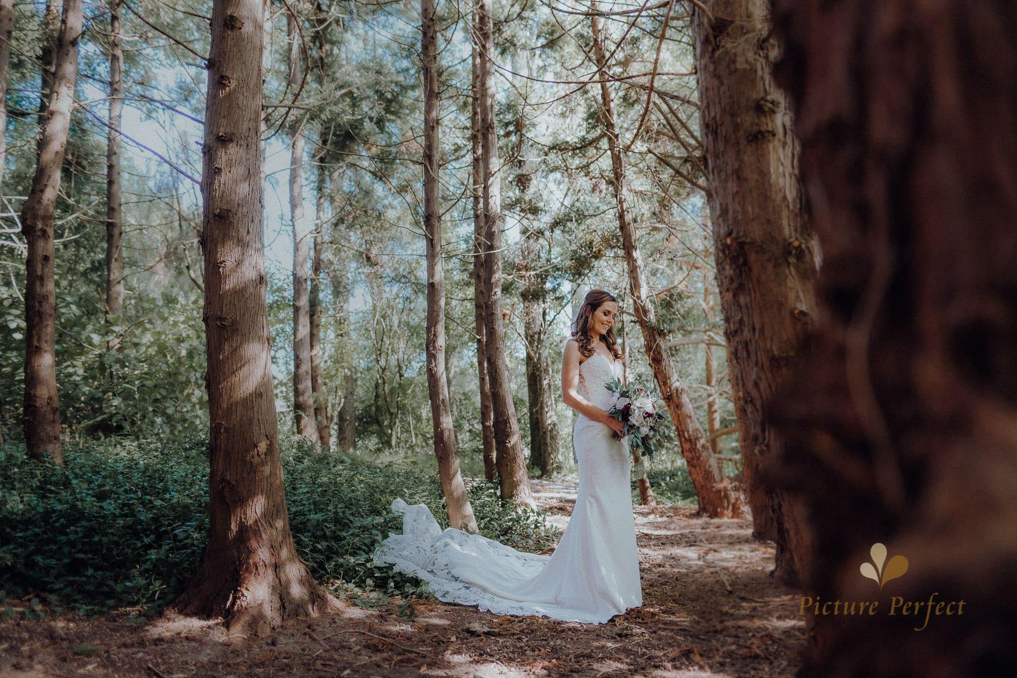 Roseburb Park wedding of Casey 3682