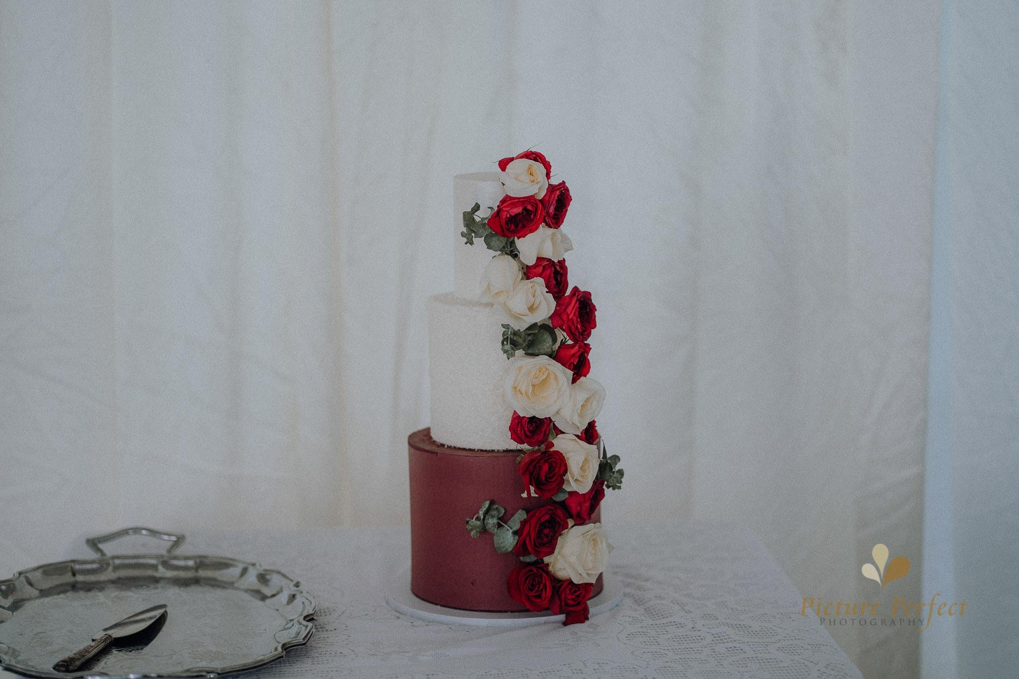 Roseburb Park wedding of Casey 3945