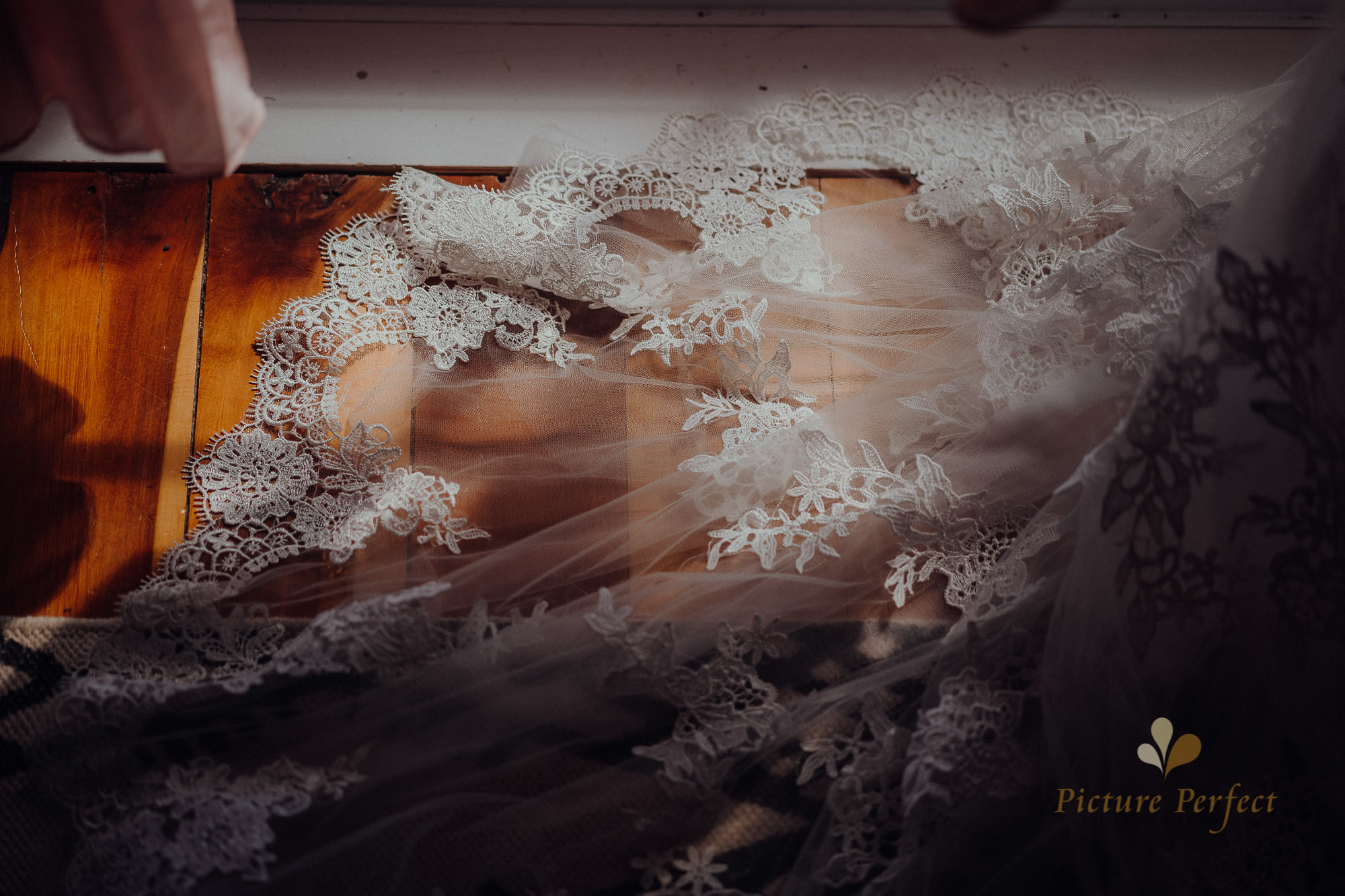Wellington wedding photographer with Ashleigh 0158_