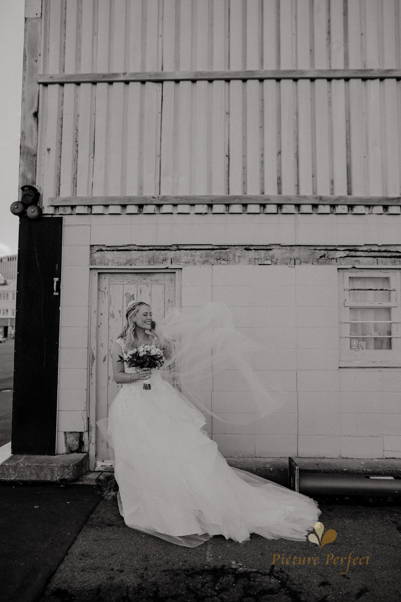 Wellington wedding photography with Sam and Nicole0730