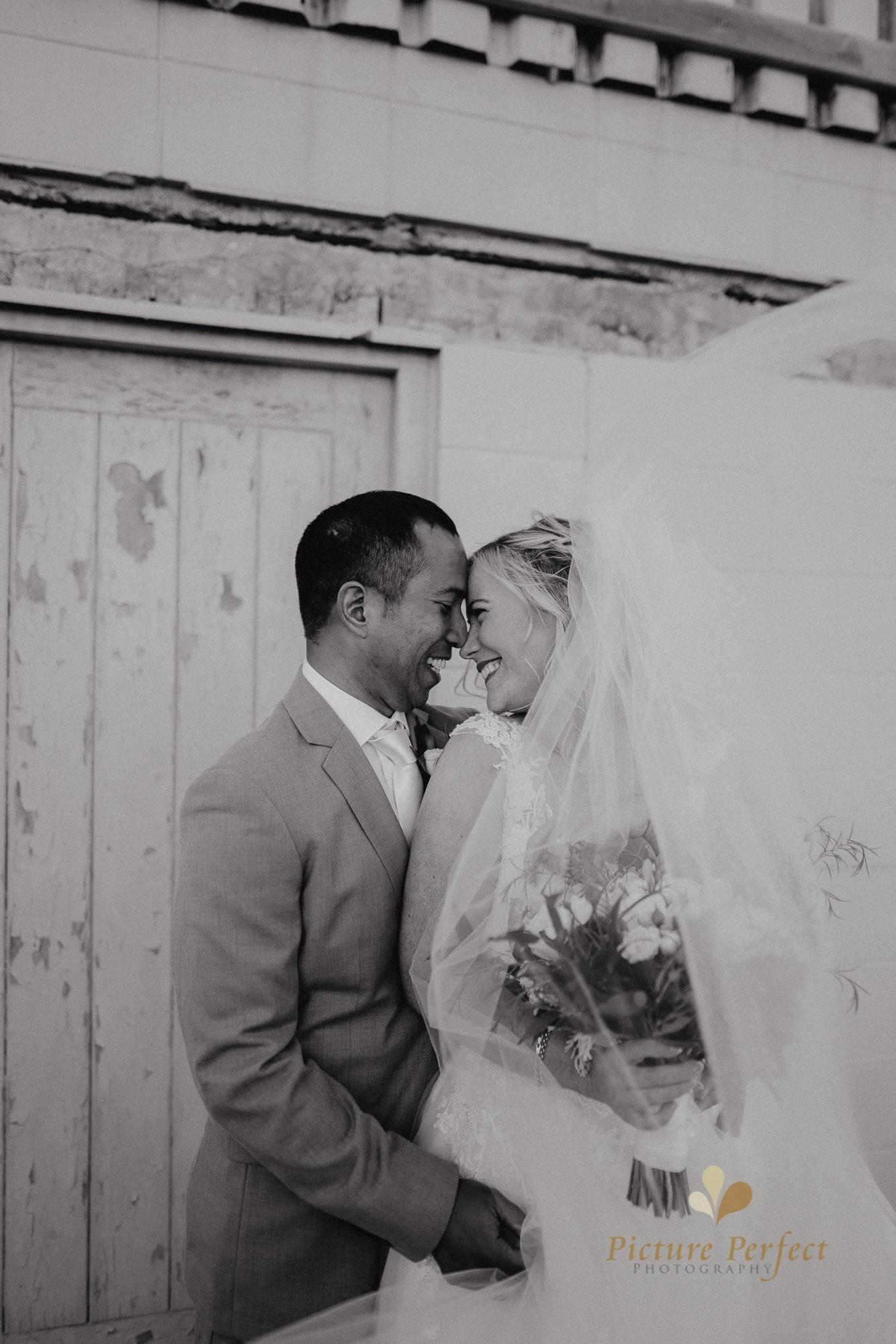 Wellington wedding photography with Sam and Nicole0740