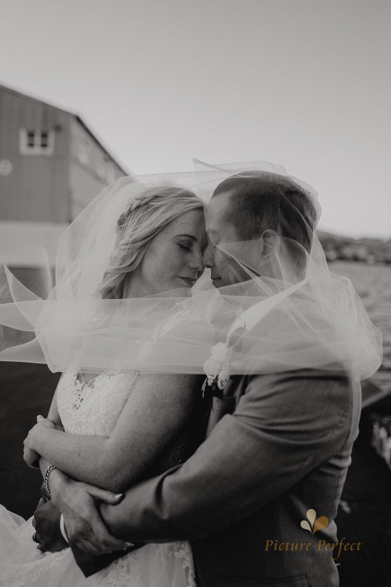 Wellington wedding photography with Sam and Nicole0921