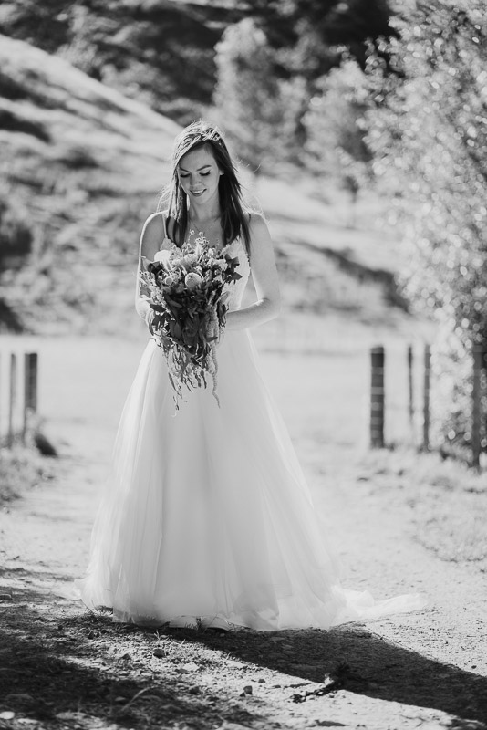 Makoura Lodge wedding photography of Ned and Amanda 0595