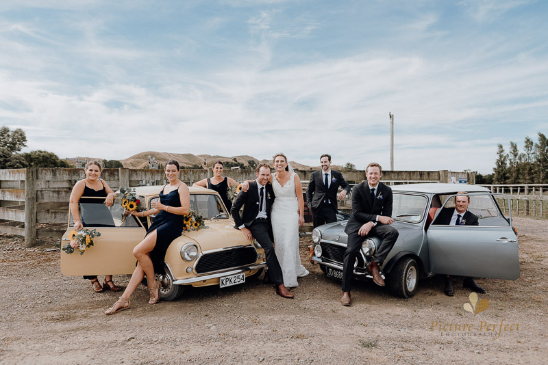 bridal party posignwith wedding car for wedding photography