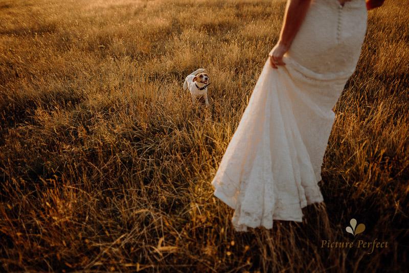Manawatu farm rustic wedding of Natalie and Hamish 6622